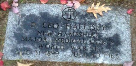 HALLISEY, DENNIS LEO - Hillsborough County, New Hampshire | DENNIS LEO HALLISEY - New Hampshire Gravestone Photos