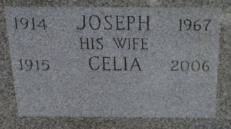 KARCZEWSKI, JOSEPH - Hillsborough County, New Hampshire | JOSEPH KARCZEWSKI - New Hampshire Gravestone Photos