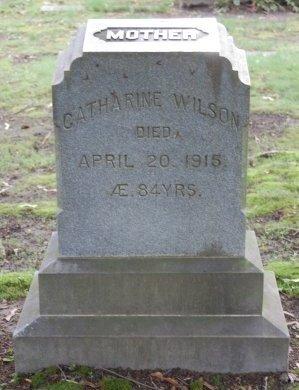 WILSON, CATHARINE  - Hillsborough County, New Hampshire | CATHARINE  WILSON - New Hampshire Gravestone Photos