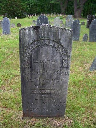 WEBSTER, ROLLINS - Rockingham County, New Hampshire | ROLLINS WEBSTER - New Hampshire Gravestone Photos